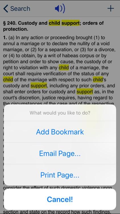 NY Domestic Relations Law 2020 screenshot-3