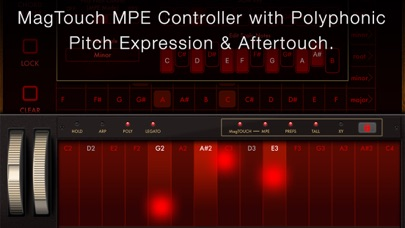 Magellan Synthesizer 2 screenshot 7