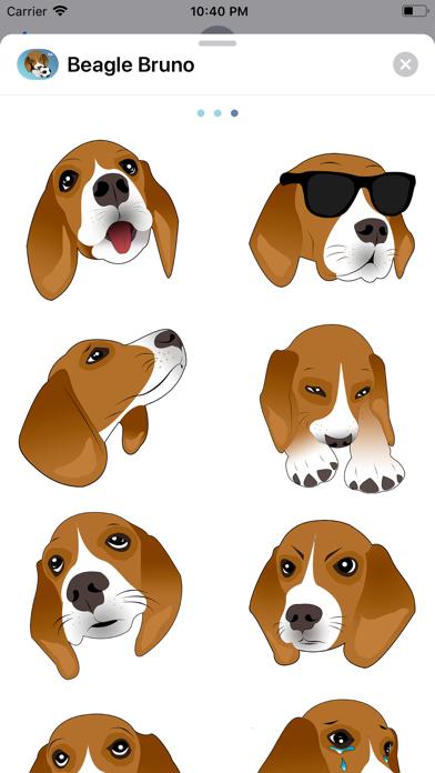 Beagle Bruno screenshot three
