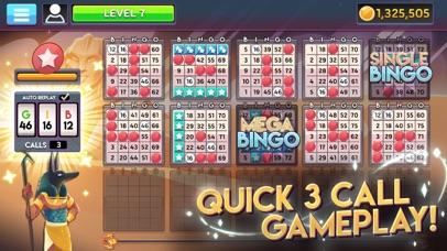 Bingo Infinity screenshot 2
