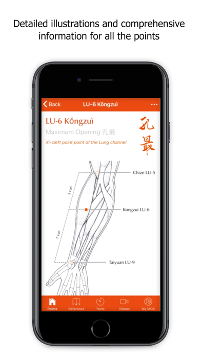 A Manual of Acupuncture Screenshot