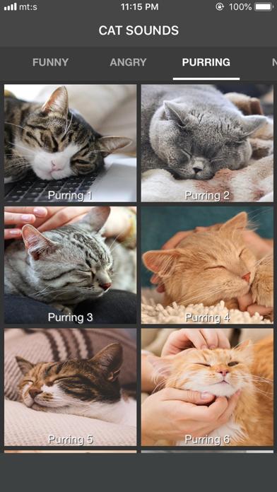 Cat Sounds - ColecciónCaptura de pantalla de7