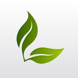 Leaf: to-do list & planner
