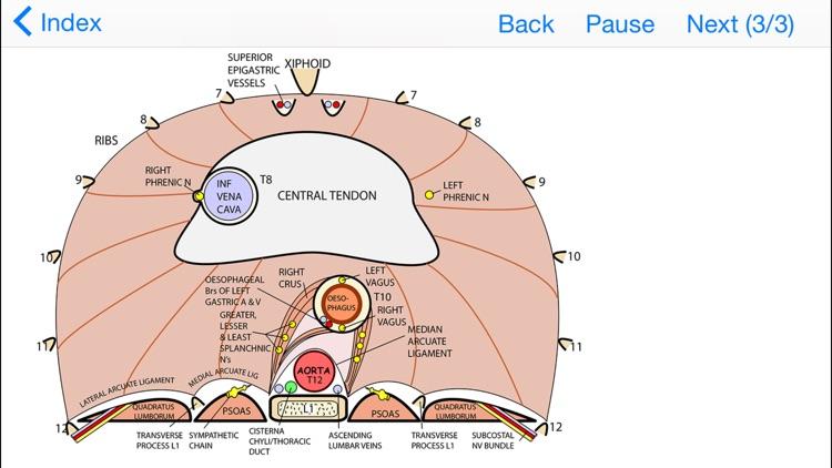 Tricky Areas of Anatomy
