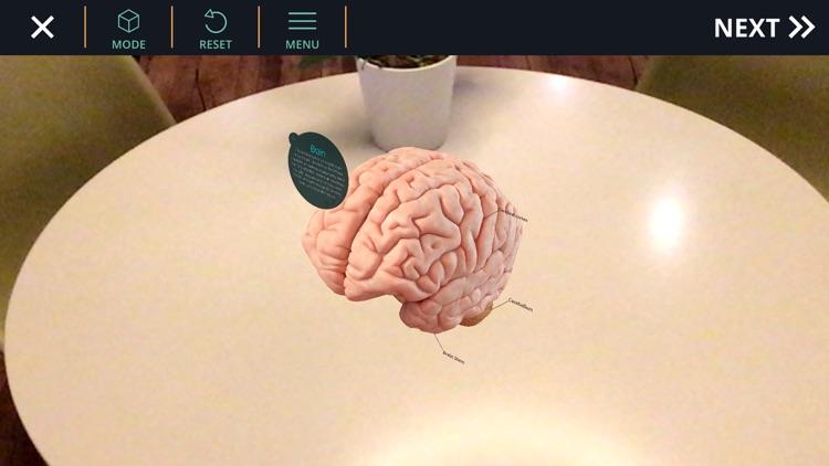 AnatomyAR+ for Merge Cube screenshot-0