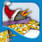 App Icon for Tacky's Christmas App in Colombia IOS App Store