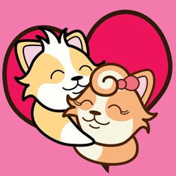 CORGi Couple Love Story
