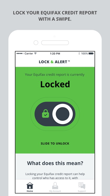 Lock & Alert