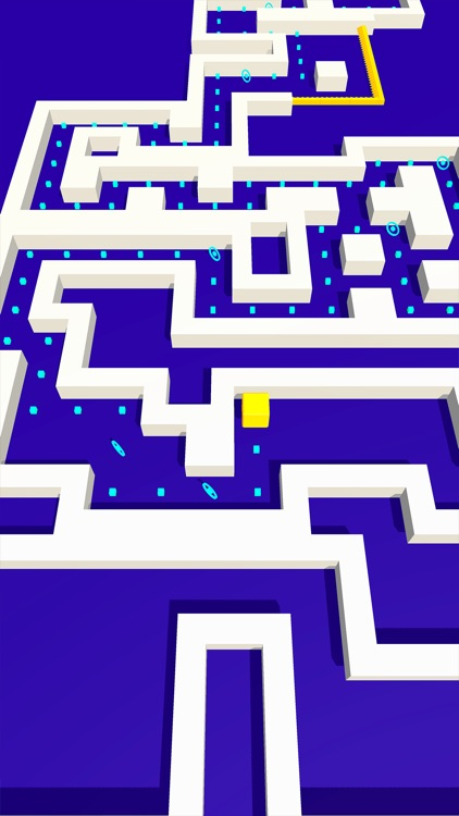 The Maze!!