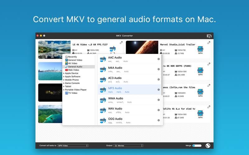MKV Converter Screenshot