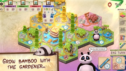 Takenoko: the Board Game screenshot 7