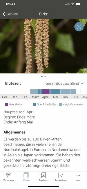 ‎Husteblume Screenshot