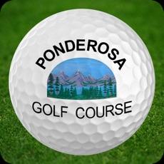 Activities of Ponderosa Golf Course