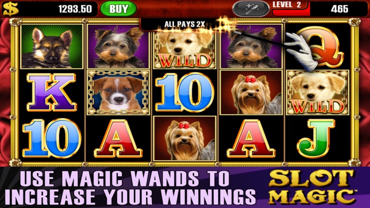 Slot Magic™ screenshot-3
