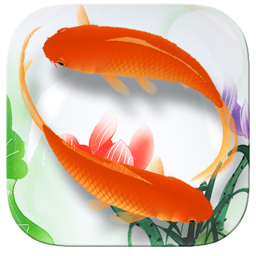 Beautiful Koi for Mac