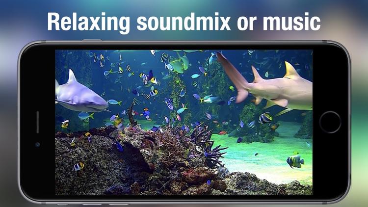 Aquarium Live HD