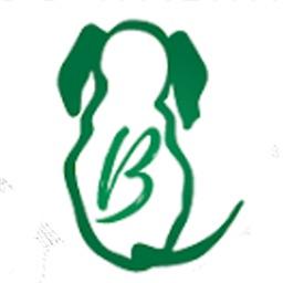 Benterprise Dog Walking LLC