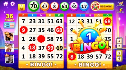 Bingo! for windows pc