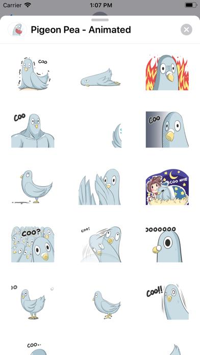 Pigeon Pea - Animated screenshot 1