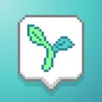 Aloe Bud