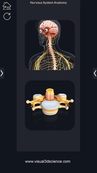 Screenshot for My Nervous System Anatomy in Australia App Store