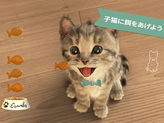 小さな子猫-私の好きな猫  3+のおすすめ画像4