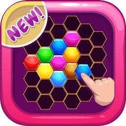 Hexa Grid Puzzle