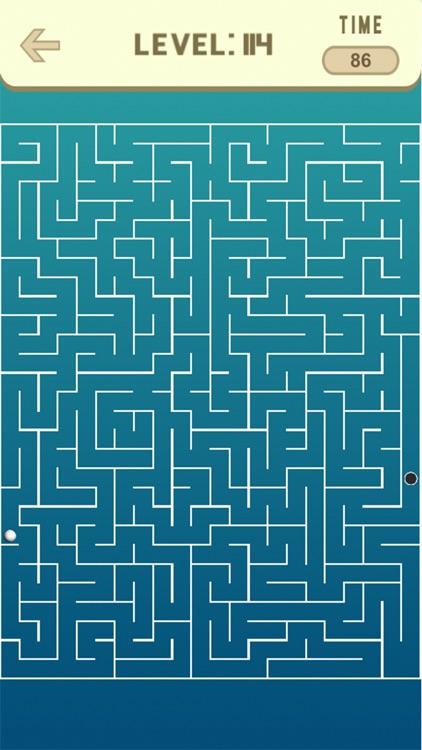 Maze Game screenshot-3