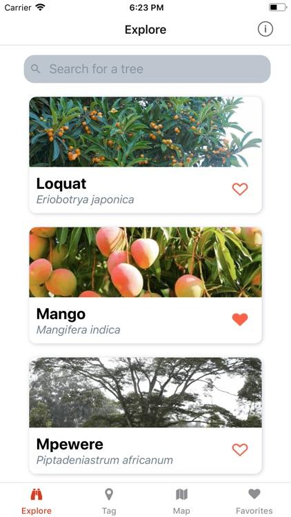 Uganda's Trees