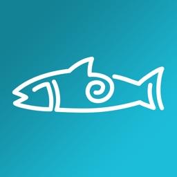 Fish Swami