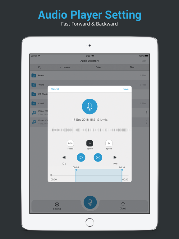 Audio Recorder : Professional Voice memo recording screenshot