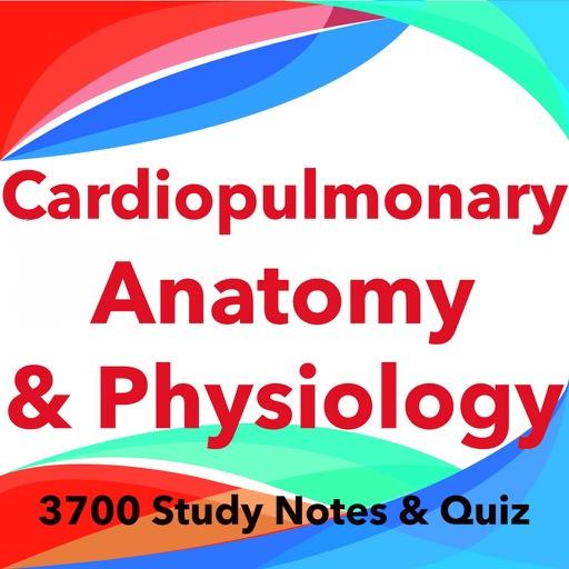 Cardiopulmonary A&P Exam Prep