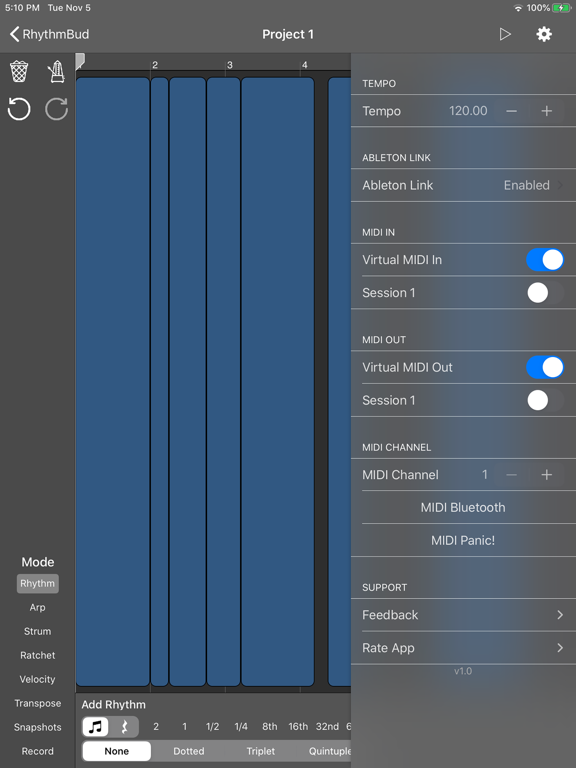 RhythmBud - AUv3 MIDI FX screenshot 12