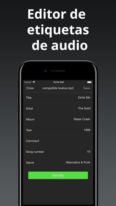 download Evermusic Pro: descargar músic apps 4