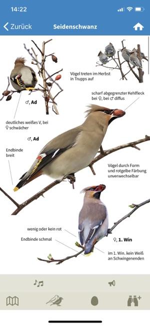 e9e1db1e380 NABU Vogelwelt im App Store