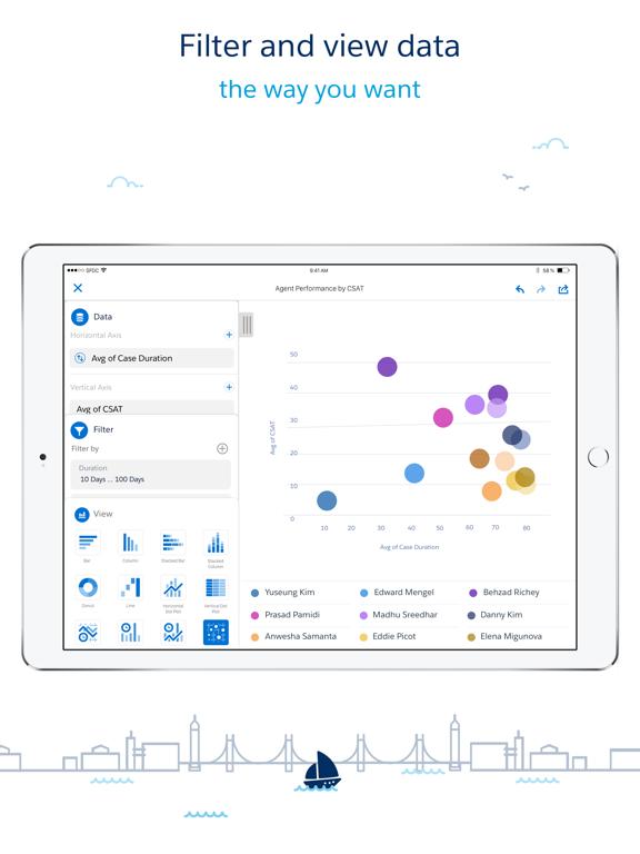 Salesforce Wave Analytics screenshot