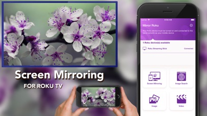 Mirror For Roku - Screen Share by PQMobile (iOS, United States