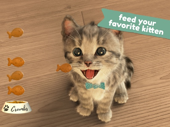 Little Kitten -My Favorite Cat Screenshots