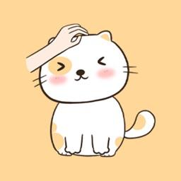 猫咪SHOW