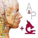 icone Anatomie & Physiologie