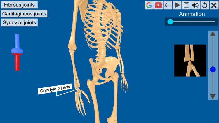 Joints: The Human Levers screenshot-4