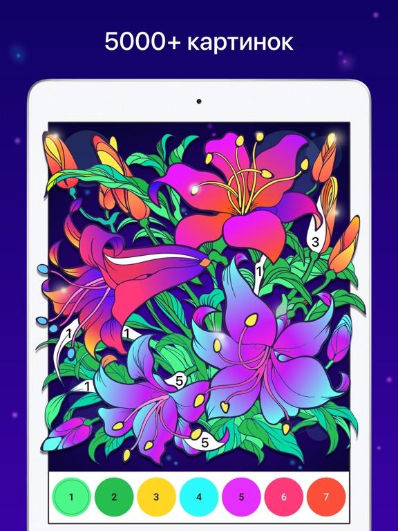Chamy - Раскраска по номерам для iPad