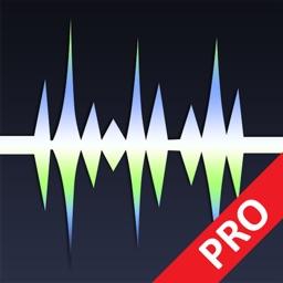 WavePad Master's Edition