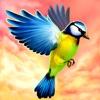 飛ぶ鳥 3D - iPhoneアプリ