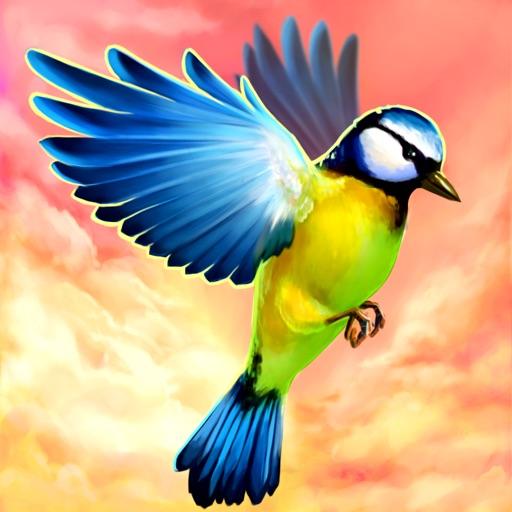 Bird Fly High 3D Simulator iOS App