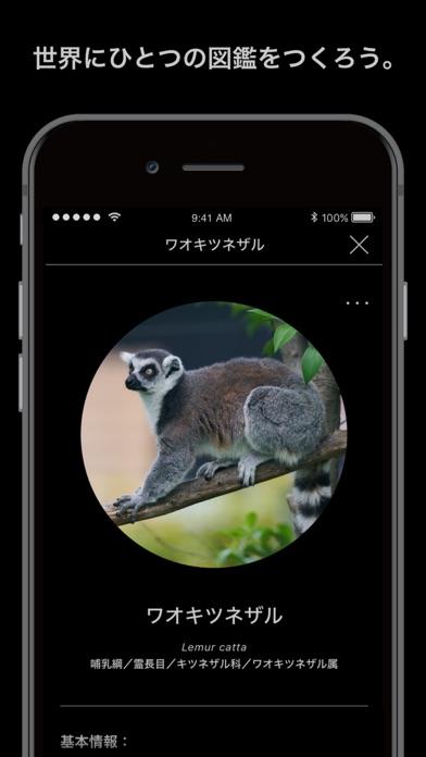 Screenshot for LINNÉ LENS in Japan App Store