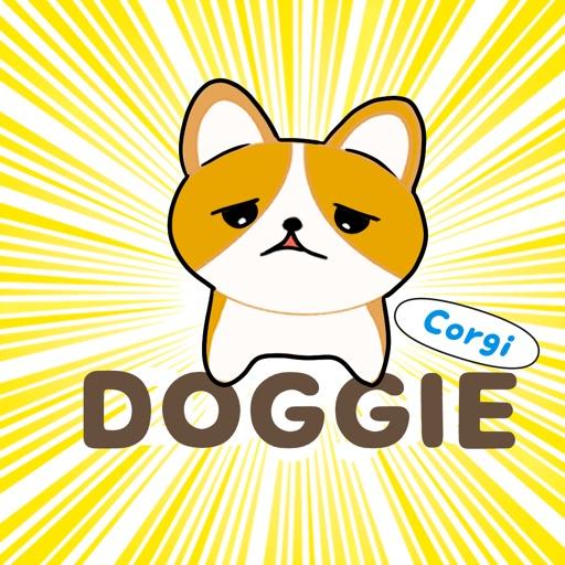 Corgi Doggie