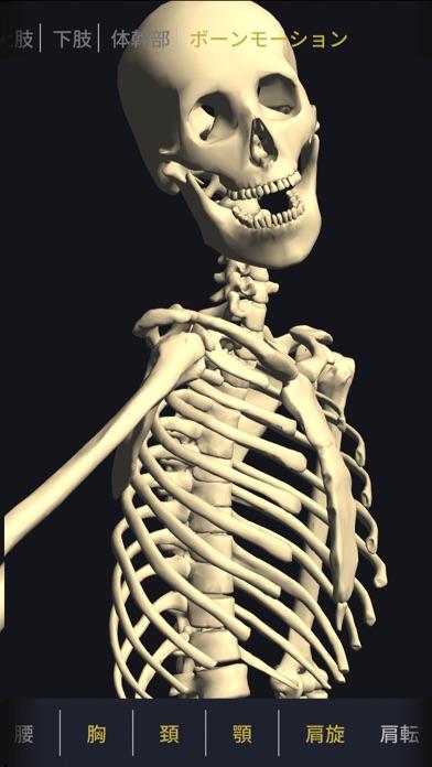 3D運動解剖学 teamLabBody ScreenShot2