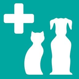 Veterinary Anatomy Quiz