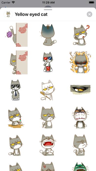 Yellow eyed cat screenshot 1